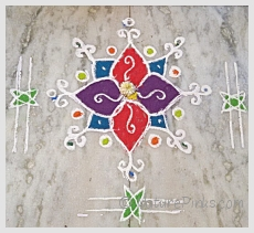 NaturePinks website launched on Sankranthi